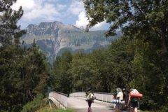 hike-pfadis-2015-24