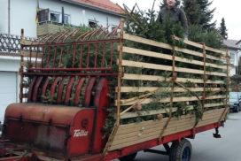 Wir sagen Danke an alle Helfer der Christbaumaktion!
