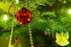 Weihnachtstreffen der aktiven und exAktiven Pfadis